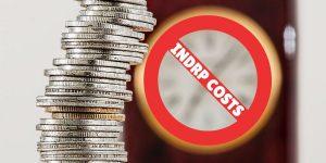 Huge Costs in favor of NIXI under INDRP ?