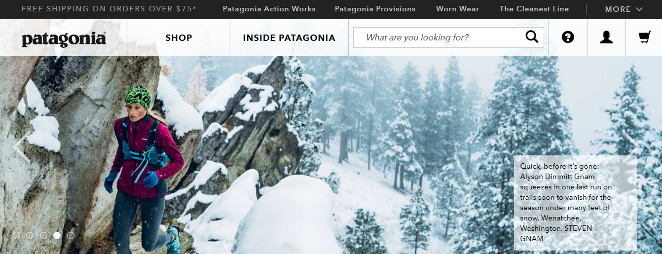INDRP/1185 – Patagonia Inc v. Doublefist Ltd [patagonia.co.in]
